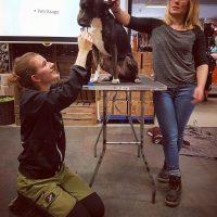 Emma och Amanda föreläser, visar på hundmodell