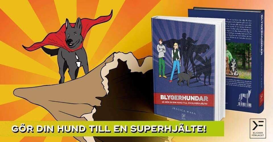 Blygerhundar - bok